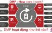 programmatic-urekamedia-mediaeyes-dsp-part7-dmp-2